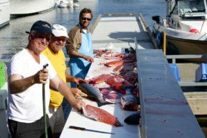 Men catching salmon